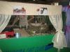 Empoli 2012 #01
